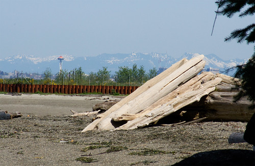 beach_jetsam_w_space_needle