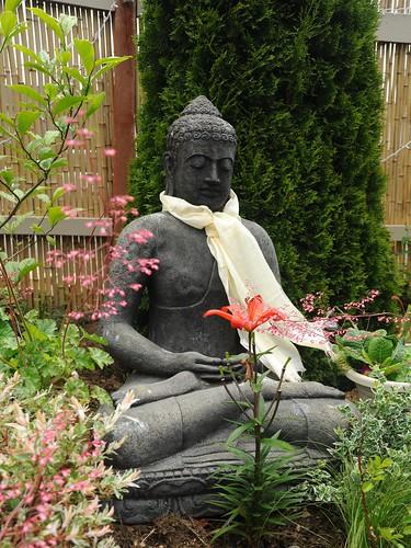 Statue of Lord Buddha, meditation posture, Amitabha, wearing a blessed white Tibetan khata (kata), ritual scarf, flowers, plants, bamboo fence, Seattle, Washington, USA by Wonderlane