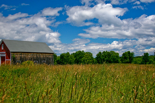 Barn & Field; Newton, NH June 2012 by Arthur Noel