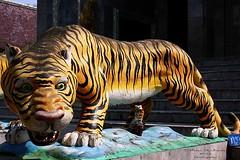 IMG_0213 Wat Ban Paang.  วัดบ้านปาง