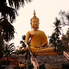 IMG_0249 Wat Ban Paang.  วัดบ้านปาง