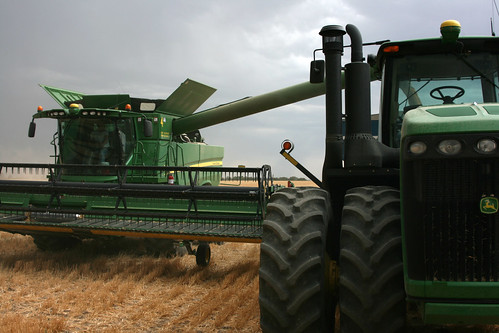Dave dumps on the graincart in hopes to beat the rain