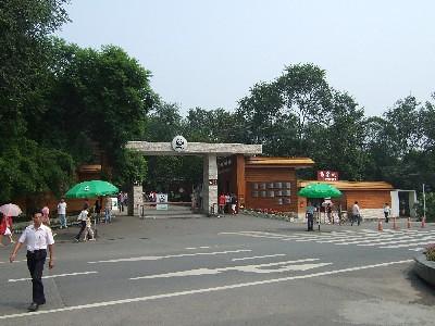 成都パンダ繁育研究基地(成都大熊猫繁育研究基地)