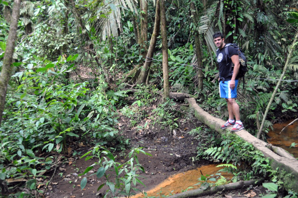 Último obstáculo antes de llegar a la recompensa final, se trata de un tronco de árbol para cruzar un cauce con color amarillento, como azufre. río celeste, colorido capricho de la naturaleza - 7538417262 b2663fafc2 o - Río Celeste, Colorido capricho de la Naturaleza