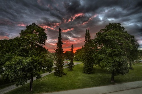 park trees sky sun storm clouds sunrise canon dawn day earlymorning stormy