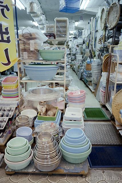 台所用品の店 / Kitchen ware shop