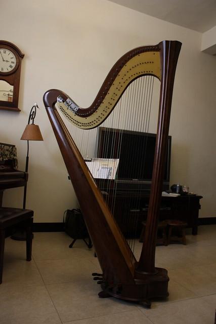 跟我差不多高(186cm)的豎琴