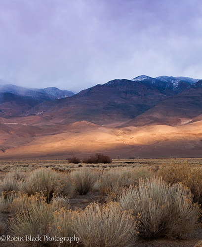 california winter light sunset snow storm fog clouds ngc dramatic whitemountains hwy395 bishop goldenhour naturesbest clearing nationalgeographic owensvalley rabbitbrush highway395 inyo owensriver outdoorphotographer canon5dmarkii robinblackphotography