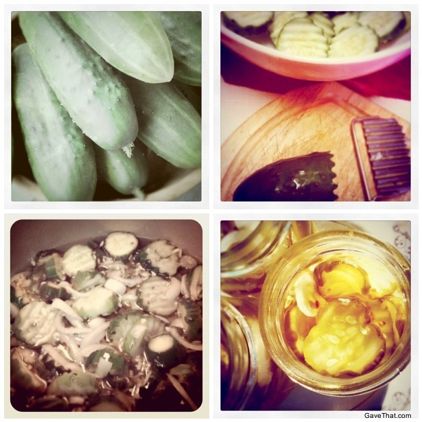 Instagraming the Pickling Process for making homemade bread and butter pickle gifts