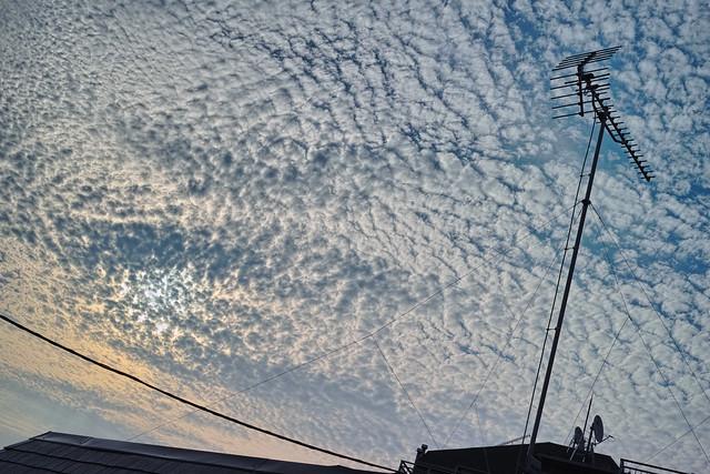 20120804_01_Foveon Sky