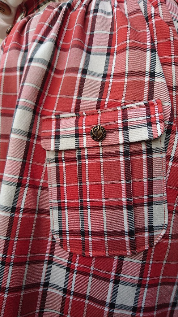 Plaid Colette Zinnia skirt