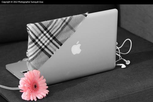 http://www.flickr.com/photos/50585576@N04/6955625862