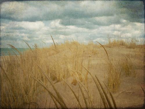 texture beach clouds nuvole dunes spiaggia garyin millerbeach mygearandme mygearandmepremium mygearandmebronze rememberthatmomentlevel4 rememberthatmomentlevel1 rememberthatmomentlevel2 rememberthatmomentlevel3 rememberthatmomentlevel7 rememberthatmomentlevel9 rememberthatmomentlevel5 rememberthatmomentlevel6 rememberthatmomentlevel8