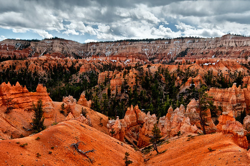 Bryce canyon vista 1 by joeeisner