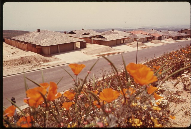 DOCUMERICA: Flowers planted around spyglass homes built on a terraced hillside [Southern California], May 1975, by Charles O'Rear.