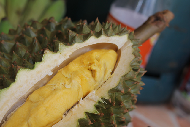 Eating durian.. one of the best things to do in Bangkok!