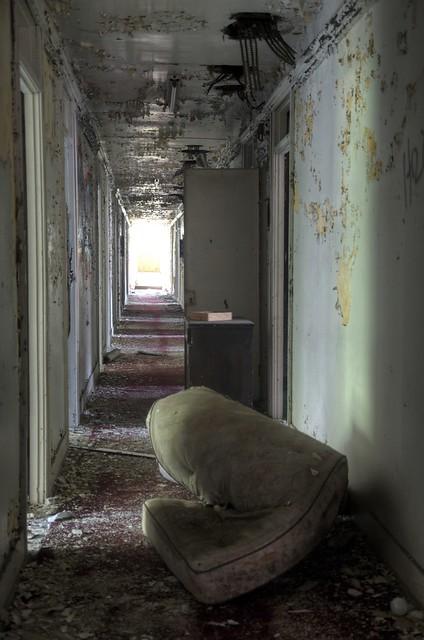 Bear Back Hotel