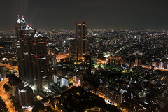 A view from Tokyo Metropolitan Government Building Observation #3