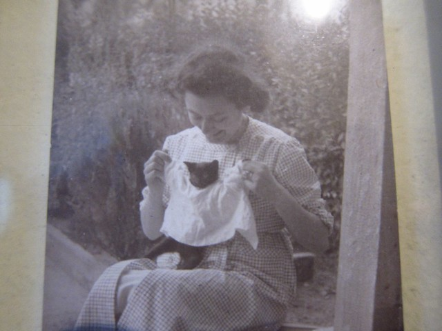 My Great Aunt Vilna, Crocheting a Sweater for a Cat