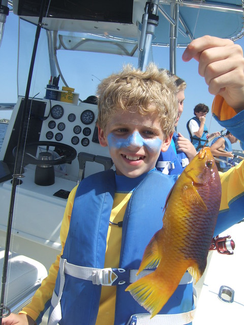 Colin catches a spanish hogfish.