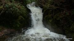Der Geroldsauer Wasserfall (Schwarzwald) (2011-12-27 -04)