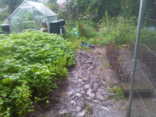 mud on allotment Jul 12 4