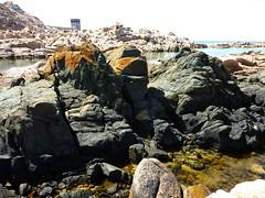 Les petites calas avant Capu di Fenu : le filon noir