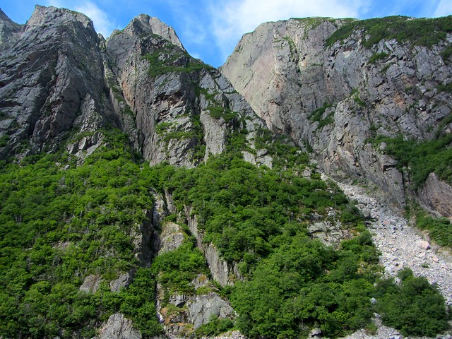Cliffs and Trees on Western Brook Pond