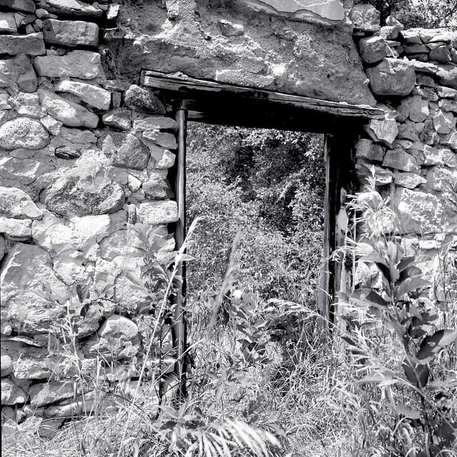 Barn Ruins III