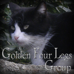 golden_four_legs