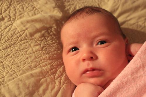Dakota 5 weeks