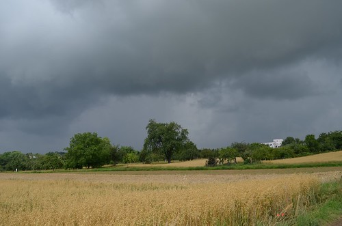 In wenigen Minuten regnet es!