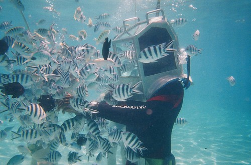 Undersea walk in Mauritius. Photo by http://www.flickr.com/photos/shankaronline/ CC BY 2.0