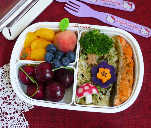 Salmon Forest Bento by sherimiya ♥