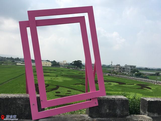 花壇彩繪稻田_015