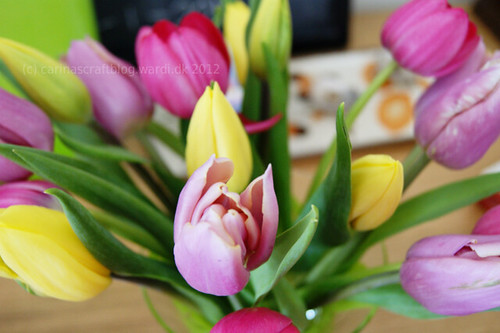 Birthday tulips from my sweetie
