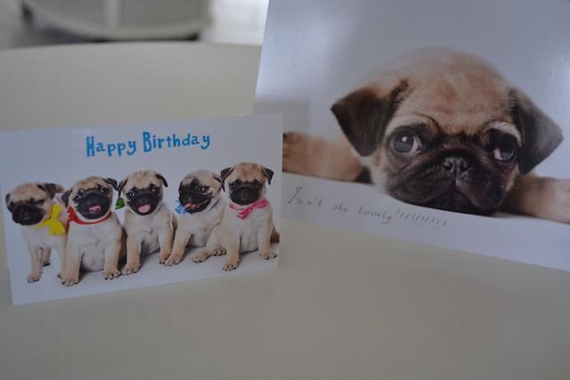 Pug cards