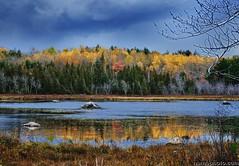 Scenes from Golden Road (Millinocket, Maine, shot with Nikon D7000)