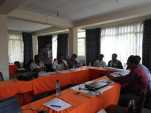 Catherine Pfeiffer facilitating the N3 partner meeting, April 2012 (Credits: ILRI/Catherine Pfeiffer)
