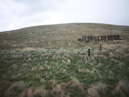 ogema hill