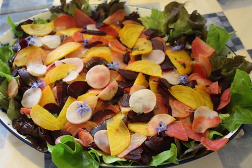 Tri colour beetroot salad
