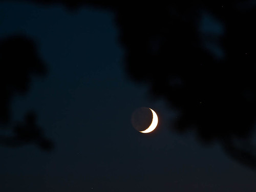 1000/825: 24 May 2012: Banana Moon by nmonckton