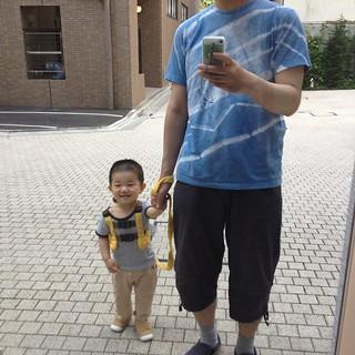 とらちゃんと朝散歩でした(2012/5/30)