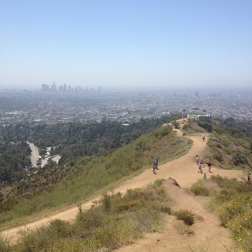 My view from the top of Griffith Park