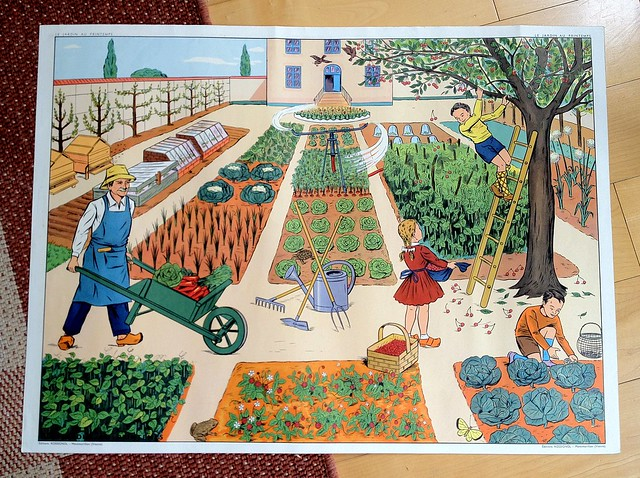 French educational poster I bought at the Brocante in Bordeaux