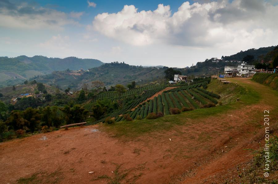 Мае Салонг, долина в Чианг Рай на севере Таиланда