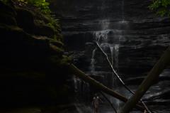 Matthiessen State Park 197