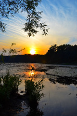 Pickerel Sunset