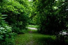 Path and Path
