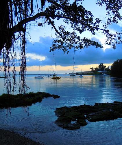 hawaii hilo bluelagoon thegalaxy thebigislandofhawaii rememberthatmomentlevel1 soulocreativity1